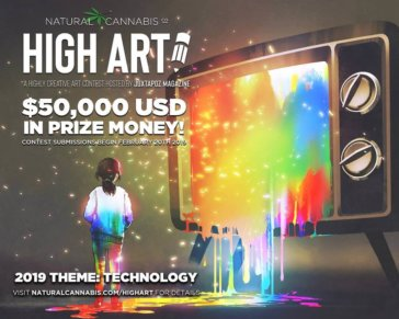 High Art Contest 2019